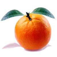 sycylijska pomarańcza